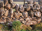 local stonebuilt wall Dumfries and Galloway