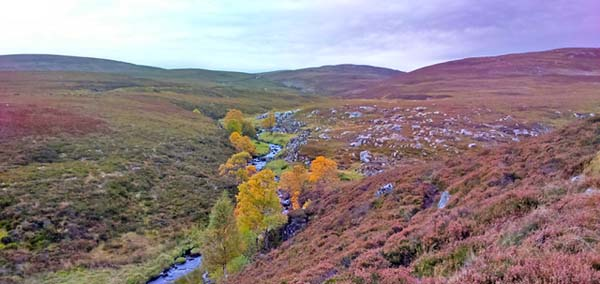 Highland view in the autumn